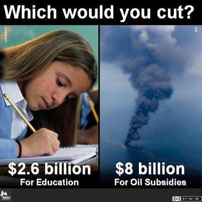 Education or oil subsidies